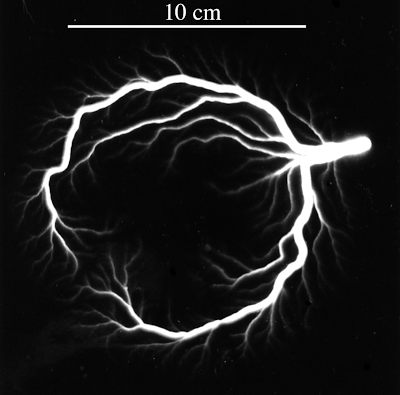 Lichtenberg figure (fractal discharge on dielecttric surface) around a space charge
